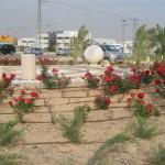 כיכר אברהם בן עמי באר שבע